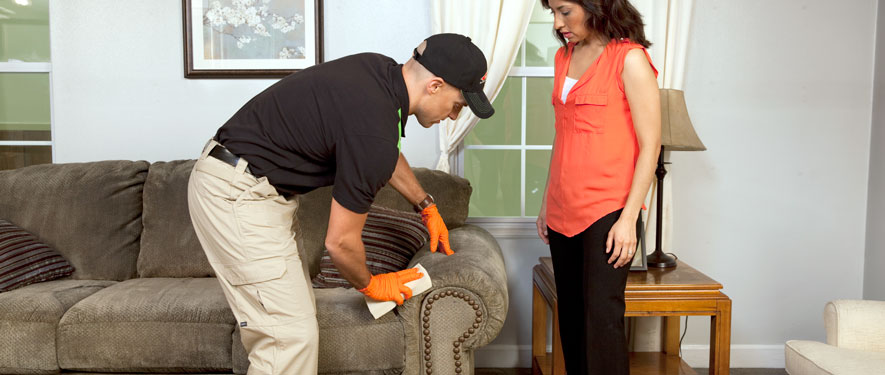 Mar Vista, CA carpet upholstery cleaning