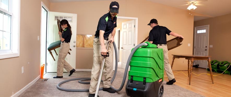 Mar Vista, CA cleaning services